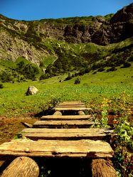 Bild mit Natur, Berge und Hügel, Berge, Brücken, Österreich, Alpen, Alpenland, Steg, Holzsteg, Brücke, Bach, Natur und Landschaft, berg, Gebirge, austria
