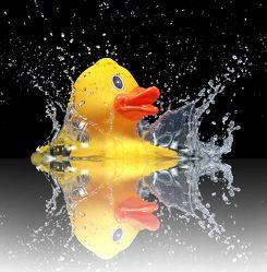 Bild mit Wasser, Reflexion, Enten, Ente, Kinderbilder, Kinderzimmer, Wassertropfen, Spiegelung, Kinder, Kind, Stilleben, Nostalgie, lustig, Baden, Bad, Badezimmer, nostalgisch, Quitscheente, kindheit, badeente, badewanne