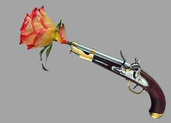 Bild mit Blumen, Blume, Blume, Pflanze, Rose, Wassertropfen, Floral, Florales, Florale Fotokunst, Frieden, Pistole, Revolver