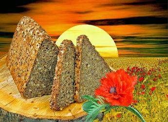 Unser tägliches Brot