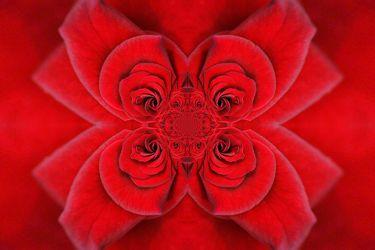 rosenornament