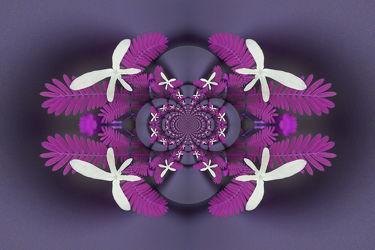 lila ornament