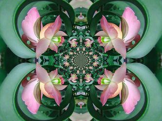 grün,lila blütenornamen, fotofilter
