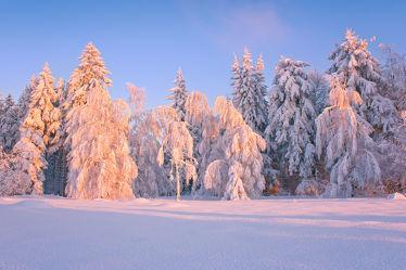 Bild mit Winter, Schnee, Eis, Sonnenuntergang, Sonnenaufgang, winterlandschaft, Landschaften im Winter, Kälte, Frost