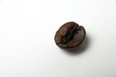 Kaffeebohn Kaffee