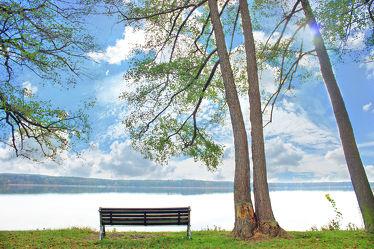 Bild mit Bäume, Gewässer, Baum, Landschaft, Seeblick, See, Scharmützelsee, Bank, Sitzbank, Bank am See, Baum am See, Ruhe, Entspannung