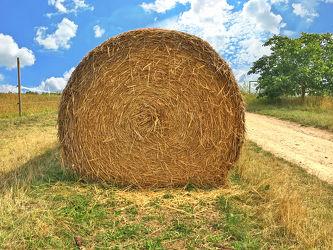 Bild mit Stroh, Grassilage, Heu, Ballen, Heuballen, Strohballen, Rundballen