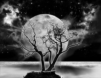 Bild mit Himmel, Himmel, Mond, Landschaft, landscape, Sterne, Nacht, schwarz weiß, mystisch, Mondschein