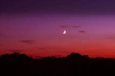 Bild mit Himmel, Rot, Dämmerung, Mond, Landschaft, Mystik, Nacht, Abend, mystisch, Abenddämmerung, Abendhimmel, Halbmond, Mondschein, Halloween, Mondsichel