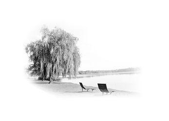 Bild mit Kunst, Baum, Landschaft, Seeblick, See, Scharmützelsee, Entspannung, art, Black and White, schwarz weiß, Minimalismus, minimal art