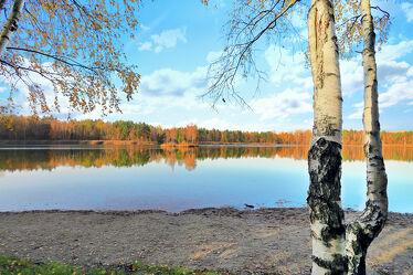 Bild mit Natur, Wasser, Wolken, Gewässer, Baum, Birke, Wolkenhimmel, Landschaft, Steine, Insel, Seeblick, See, Spiegelungen, Sachsen, Inselsee, Insel See, Steinstappel