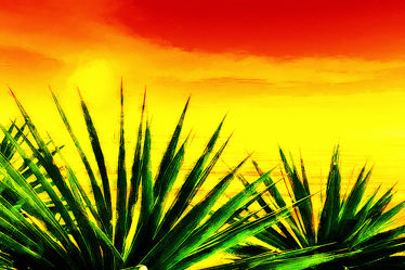 Bild mit Kunst, Urlaub, Sommer, Illustration, Wasserlandschaften, art, Gemälde, style, reggae