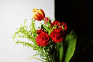 Blumengrüsse mal anders