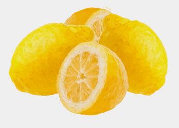 Bild mit Früchte, Zitrusfrüchte, Malerei, Frucht, Obst, Küchenbild, Stillleben, Küchenbilder, KITCHEN, frisch, Küche, Zitrone, zitronen, Kochbild, gemalte Früchte, Zitrus
