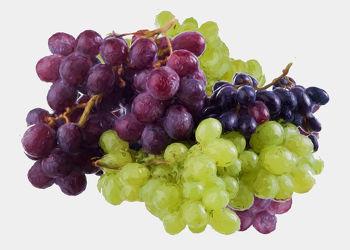 Bild mit Früchte, Malerei, Trauben, Frucht, Obst, Küchenbild, Weintraube, Weintrauben, Traube, Stillleben, Küchenbilder, KITCHEN, frisch, Küche, Kochbild, gemalte Früchte