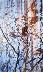 Flüstergeschichten im Wald