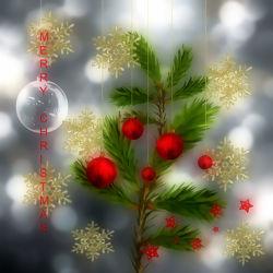 Merry Christmas I