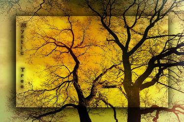 Mystic Tree II
