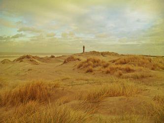Dünen am Meer