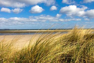 Bild mit Natur, Strände, Urlaub, Sonne, Strand, Sandstrand, Ostsee, Meer, Dünen, Dünengras, Strandhafer