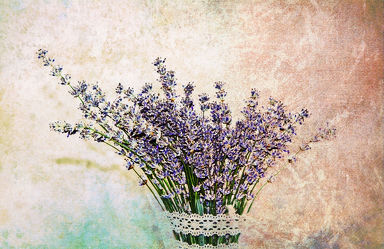 Lavendel with vintage