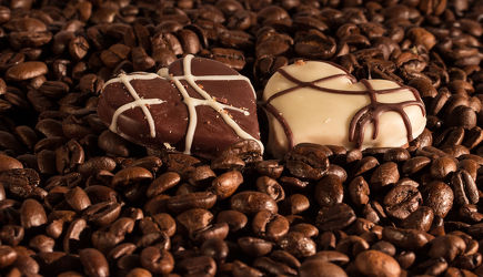 Bild mit Getränke, KITCHEN, KITCHEN, aroma, cafe, coffeetime, geröstet, Getränk, Heißgetränk, kaffee, kaffeebohne, kaffeebohnen, kaffeeduft, kaffeetasse, kaffeetassen, kaffezeit, tassen, ungemahlen, kaffe, Cappuccino, Mokka, Espresso, Küche, Küchen