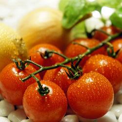 Bild mit Lebensmittel, Tomate, Tomaten, Gemüse, Küchenbild, Küchenbilder, Küche