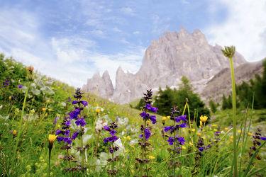 Bild mit Berge, Wolken, Italien, Alm, Berge und Almen, berg, Gebirge, südtirol