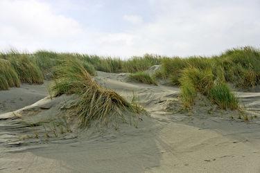 Bild mit Gewässer, Wellen, Ostsee, Meer, Dünen, Dünengras, Nordsee, Fotografien, ozean, Welle