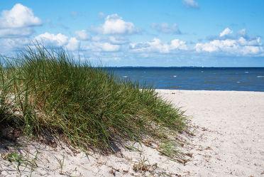 Bild mit Wasser, Gewässer, Strände, Sand, Urlaub, Strand, Sandstrand, Ostsee, Meer, Düne, Dünen, Norddeutschland, ozean
