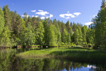 See Raatelampi bei Lieksa, Finnland