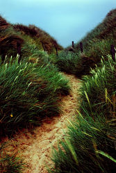 Bild mit Natur, Wasser, Wolken, Gewässer, Meere, Strände, Wellen, Sonnenuntergang, Urlaub, Sommer, Sonnenaufgang, Strand, Meerblick, Ostsee, Düne, Dünen, clouds, Insel, Beach, Ocean, Gras, Wiese, Sylt, Sylt, Retro, Reisen, Strand & Meer, Abend am Meer, Reise, Wolke, Weide, island, sea, seaside, ozean, grass