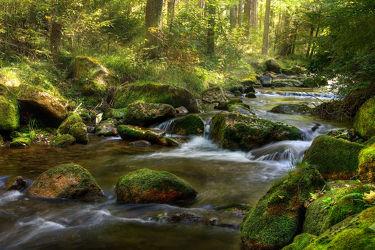 Bild mit Natur, Landschaften, Gewässer, Wälder, Flüsse, Felsen, Wald, Landschaft, Steine, landscape, Gebirge, Fluss, Gestein, Fels, erzgebirge