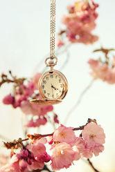Bild mit Frühling, Uhren, Uhr, Stilleben, frühjahr, Zeit