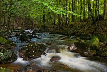 Bild mit Natur, Wasser, Gewässer, Wälder, Flüsse, Sonnenuntergang, Sonnenaufgang, Wald, Steine, Wasserfall, Harz, Fluss, Gestein, Feenland, Elfenland, Elendtal