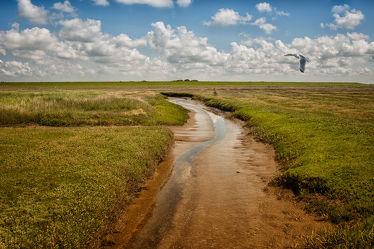 Bild mit Landschaften, Wege, Ostsee, Weg, Landschaft, Wiese, Nordsee, Feld, Küste, Felder, Wiesen, Weide, Weiden