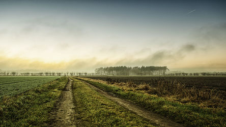 Bild mit Landschaften, Nebel, Landschaft, Wiese, Feld, Felder, Wiesen, Weide, Weiden, Dezember
