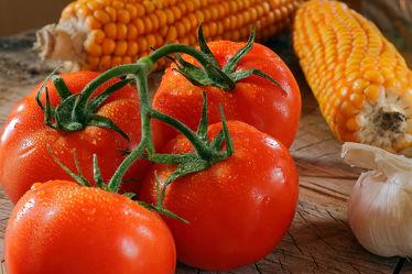 Bild mit Tomaten, Küchenbild, Stilleben, Küchenbilder, KITCHEN, Küche, Mais, Zutaten, knoblauch