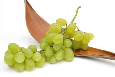 Bild mit Trauben, Weintraube, Weintrauben, Traube