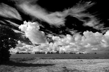 Bild mit Himmel, Wetter, Wolken, Horizont, Sommer, Nordsee, Feld, Küste, Schwarz/Weiß Fotografie, Nordseeküste, Ostfriesland, landwirtschaft, Stoppelfeld, Deich, Stimmung, Küstenschutz, Wolkenspiel
