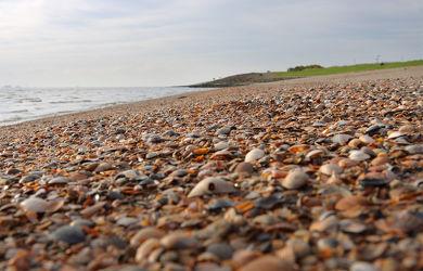 Bild mit Nordsee