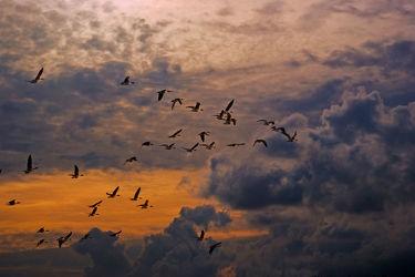 Bilder mit Wolken