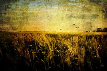 Bild mit Kunst, Landschaften, Landschaft, Abstrakt, Retro, yammay ländlich, Land, Schatten, Silhouette, natur kunst, ländlich