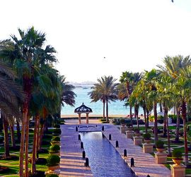 Bild mit Urlaub, Palmen, Sommer, Wege, Strand, Meer, Weg, Palme, Am Meer, Häuschen, Dubai, zum Strand