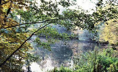Bild mit Natur, Wasser, Landschaften, Gewässer, Seen, Herbst, Landschaft, See