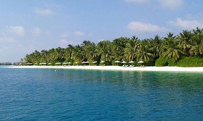 Bild mit Palmen, Strand, Meer, Paradies, Entspannung, Malediven, ozean, Indischer Ozean, Relaxen, Traumstrand, weißer Sand