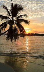 Bild mit Sonnenuntergang, Palmen, Sonne, Meer, Paradies, Blaues Wasser, Entspannung, Malediven, ozean, Indischer Ozean, Traumstrand, weißer Sand, Pavillon