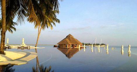 Bild mit Wasser, Sand, Palmen, Sonne, Strand, Meer, Palme, Paradies, Entspannung, Malediven, Relaxen