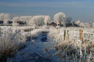 Bild mit Gräser,Bäume,Winter,Eis,Landschaft,Winterzeit,Bauernhaus,Rauhreif,Wassergräben