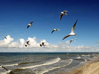 Bilder mit Ostsee